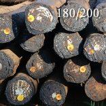 180/200 Transmission poles